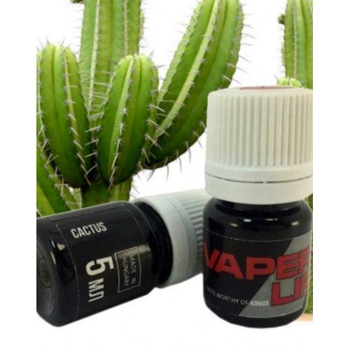 Cactus (Кактус)
